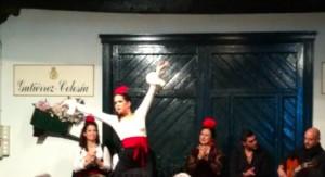 bilde flamenco